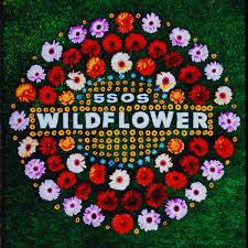5 Second of Summer - Wildflower