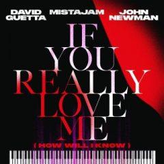 David Guetta, Mistajam & John Newman - If You Really Love Me