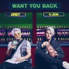 Gray ft. Léon - Want you back