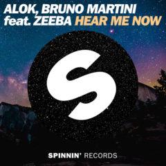 Alok e Bruno Martini