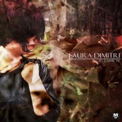 Laura Dimitri - Il senso delle cose